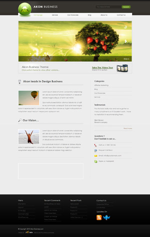 Akon Business WordPress themes