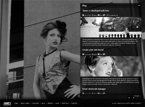 James WordPress theme