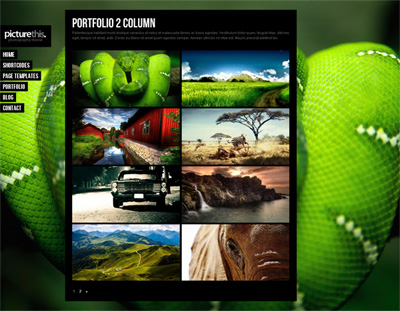 PictureThis Fullscreen Portfolio WordPress Theme