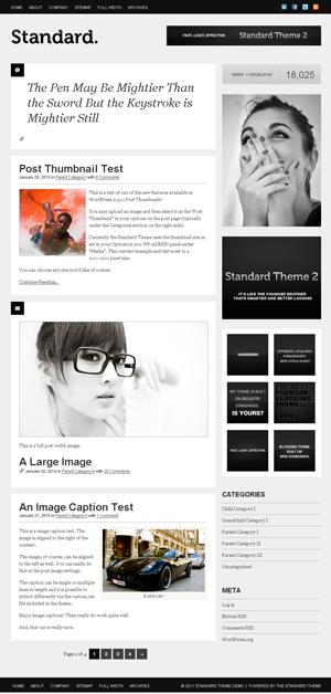 Standard WordPress theme