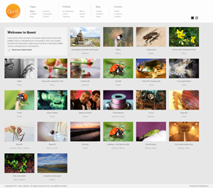Quest Photography and portfolio theme