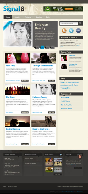 signal8 wordpress template