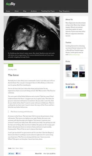 tinyblog wordpress tumblog theme