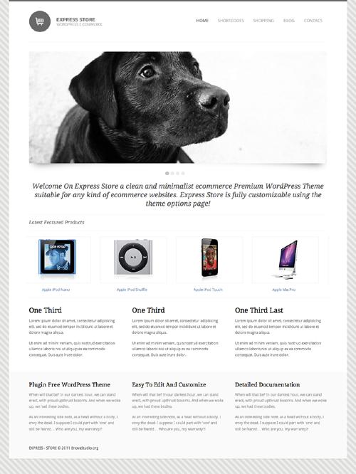 Express Store Premium E-Commerce WordPress Theme