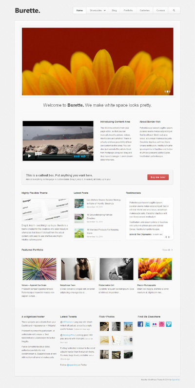 Burette WordPress Theme