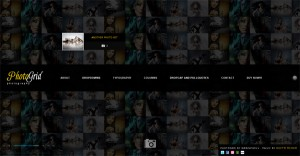 PhotoGrid One Page Ajax Photography WP Theme