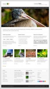 Cruz Modern Business WordPress