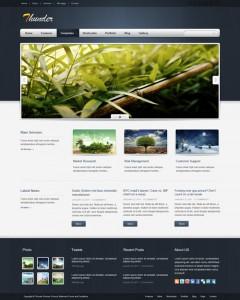 Thunder Corporate & Portfolio WordPress Theme