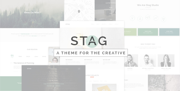 Stag v1.3 - Portfolio Theme for Freelancers and Agencies